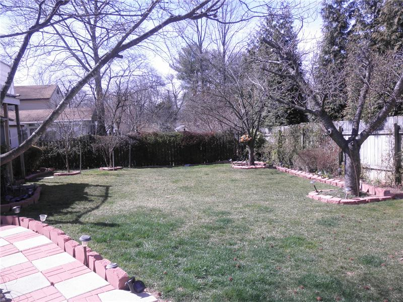Overview of rear landscaped yard